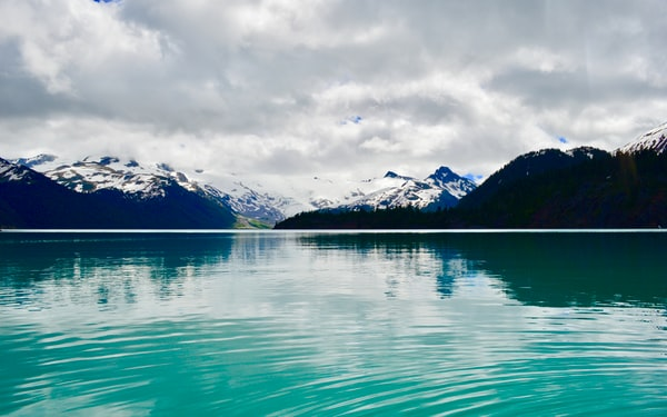 An Introduction to External Flash Units