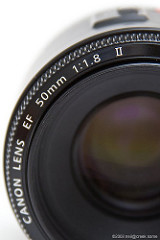 Photography 101 - Lenses, Light and Magnification
