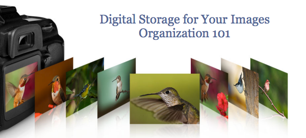digital-storage-images.png