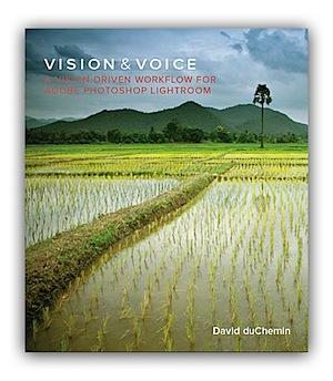 VisionVoice-Cover.jpg