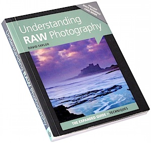 Understanding RAW Photography 1.jpg
