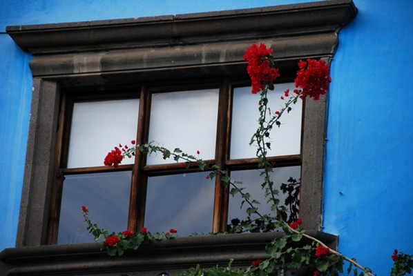 Window in old town