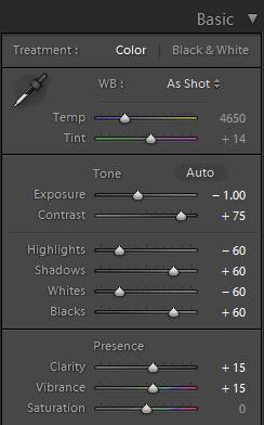 106-HDR-Light-Exposure-(-1.00)
