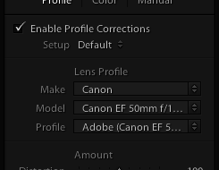 screenshot showing Lightroom Lens Corrections Settings