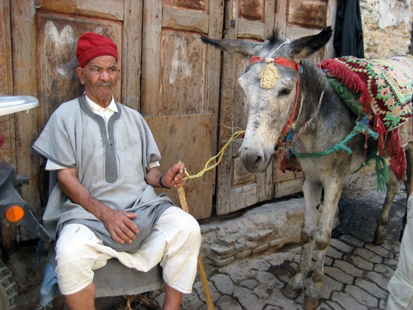 Man and donkey, Fes medina, Morocco