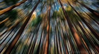 Zoom Blur Final