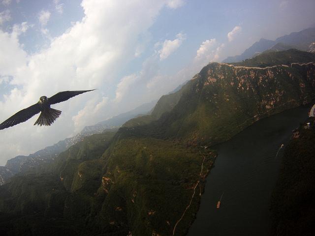Falcon Attacks (KAP Rig) @ The China Great Wall