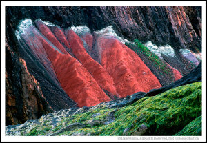 An isolated detail of a shoreline cliff allows the reds to enhance the greens, or vice versa ... depending on how you look at it.  Location: Five Islands Provincial Park, Nova Scotia, Canada