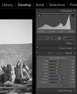 Black and white mix panel in Lightroom Develop module