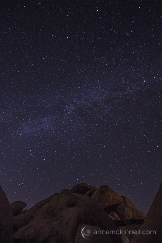 Starry Night at Joshua Tree National Park, California