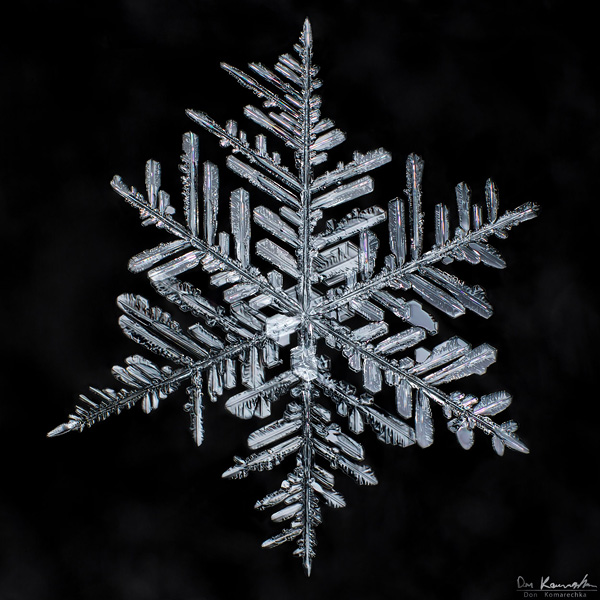 How to Photograph Snowflakes 4