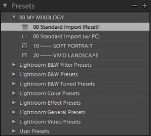 02-ligthroom-4-standard-import-preset