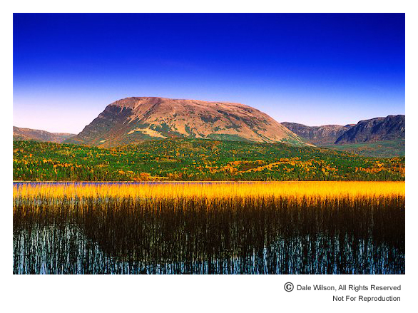 Gros Morne Mountain as seen from Rocky Harbour Pond. Filters used: Cokin 173 Blue/Yellow Colour Polarizing, Cokin 2-stop blue soft edge graduated and Singh-Ray Colour Intensifying