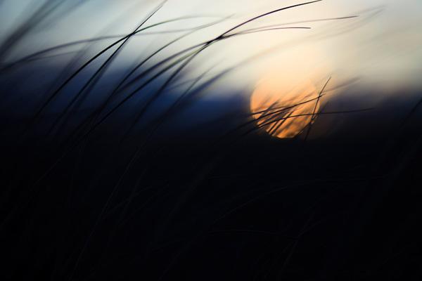 A photo with subtle colour