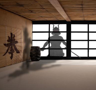 9 Samurai Eyes
