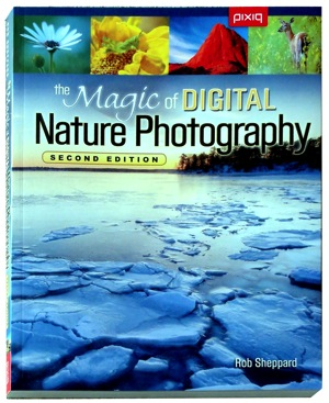 The-Magic-of-Digital-Nature-Photography.JPG