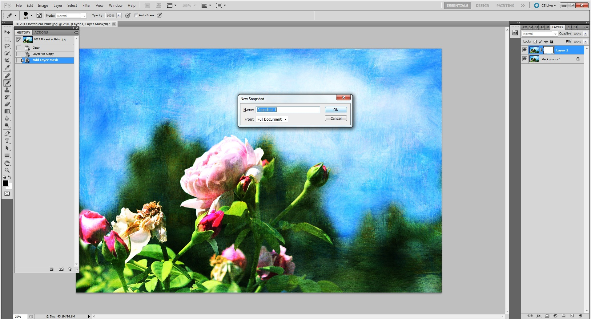 alt-and-new-snapshot.jpg