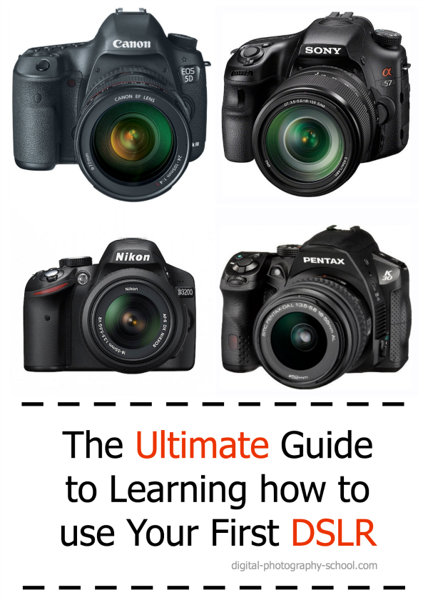 Learn How to Master Your Digital SLR Camera Settings ...