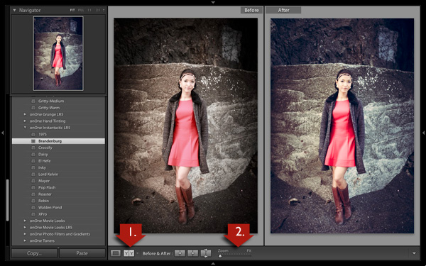 Lightroom develop presets