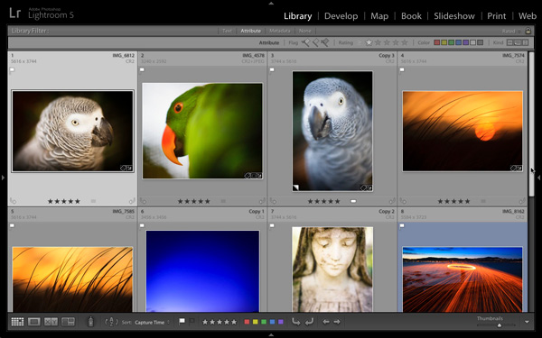 Keywords in Lightroom 5