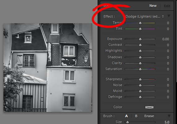 Double click Effect to reset all the Adjustment Brush sliders.