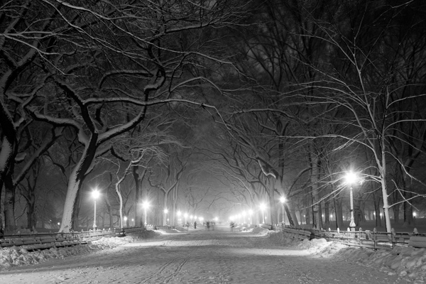 Poets' Walk, Central park, NYC.