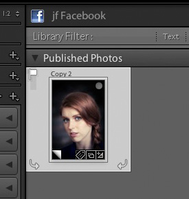 Lightroom Publish Service