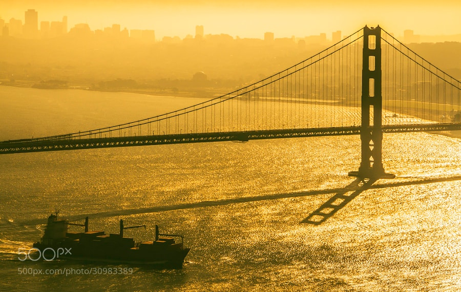 Photograph The Silhouette of an Icon by Alister C. on 500px