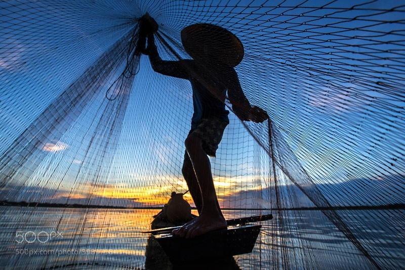 Photograph Photographer is fish by sarawut Intarob on 500px