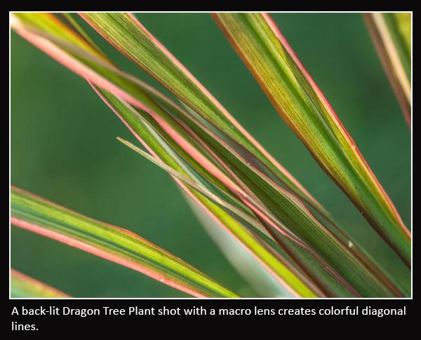 Abstract pics_0006_Diagonal Lines