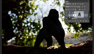 Gorilla-duplicating-masks-on-other-adjustment-layers.jpg