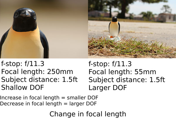 10 depth of field