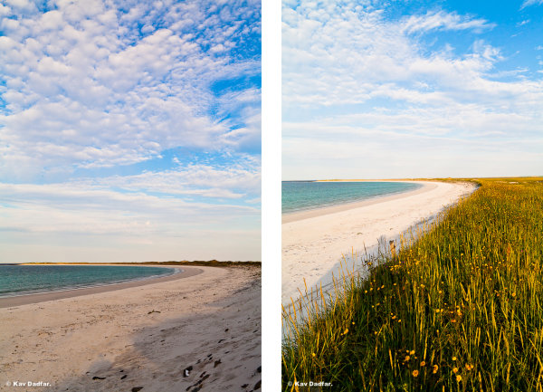 The photo on the left was my first shot. On the right was after around 20 mins several shots later.