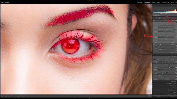 EyesBP 6