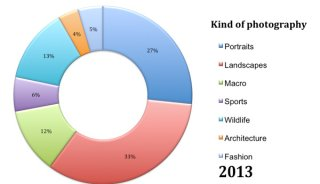 poll-july-2013