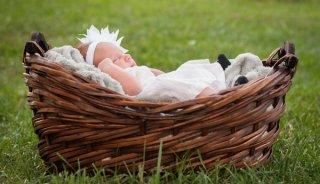 baby-basket