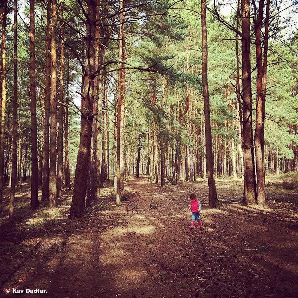 Girl_Woods_KavDadfar