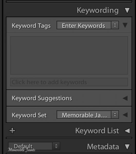 Keyword Panel in Lightroom's Library Module