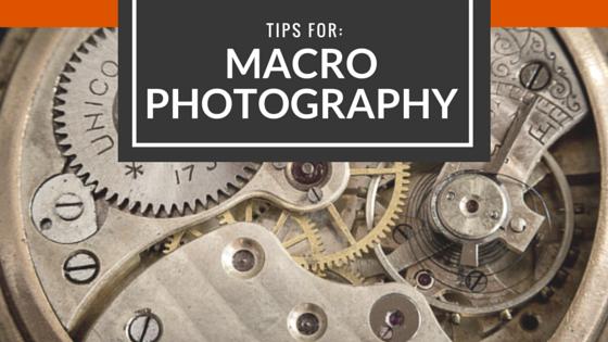 Macro Photography Tips - Video Tutorials