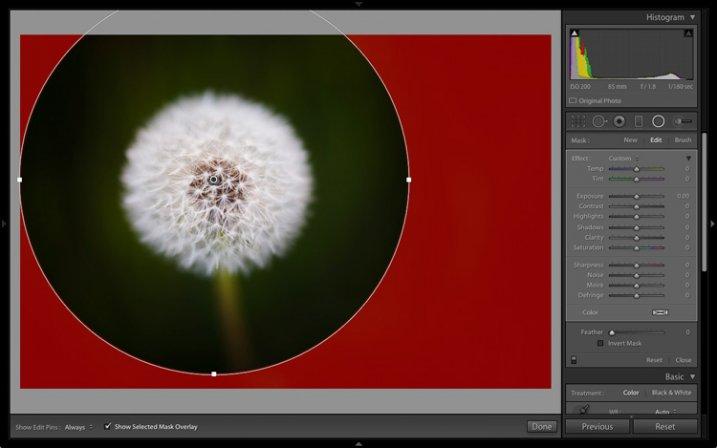 Lightroom 6 graduated radial filter adjustments