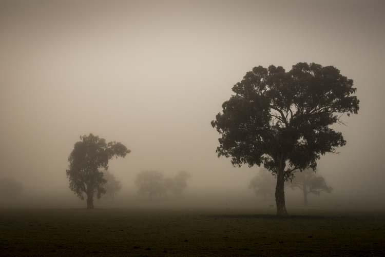 cole-landscape-road-side-photography-0001