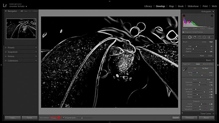 Lightroom's visualize spots tool