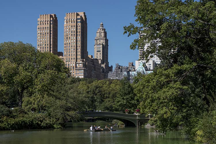leannecole-city-central-park