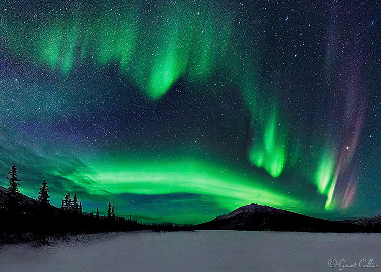 Grant Collier Northern Lights 2