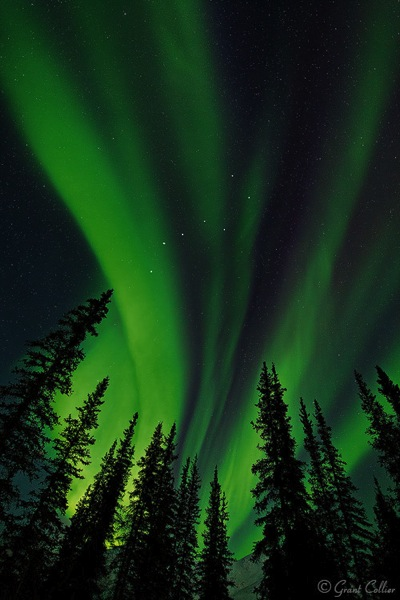 http://digital-photography-school.com/wp-content/uploads/2015/12/Grant-Collier-Northern-Lights-3.jpg