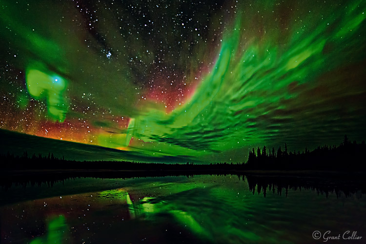 Grant Collier Northern Lights 4