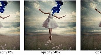 05-opacity.jpg