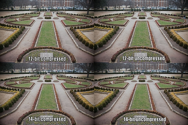 raw-formats-compared-garden-overexpoure-fixed-compared