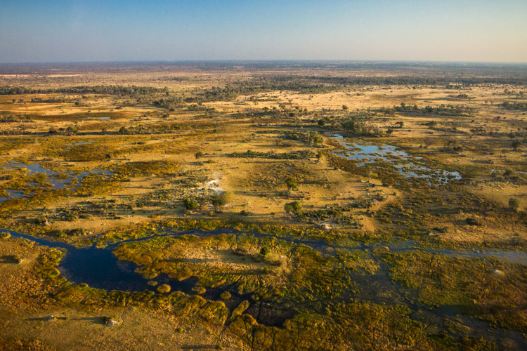 WILLCK 3 OKAVANGO wide
