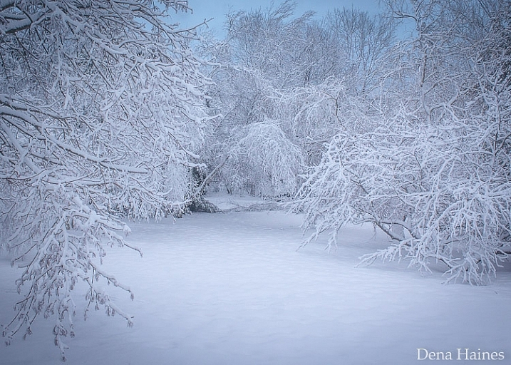 snow photography tips a beginners guide